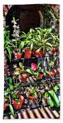 Key West Garden Club Pots Beach Towel