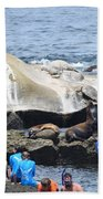 Kids And Sea Lions Beach Towel