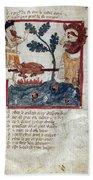 King Arthur And Giant Beach Towel