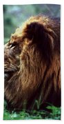 King Of Beasts Beach Towel