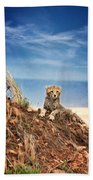 King Of The Hill Beach Towel