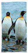 King Penguins Beach Towel