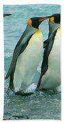 King Penguins Going To Sea Beach Towel