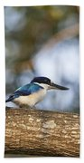 Kingfisher-top-end Australia Beach Towel