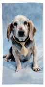 Kippy Beagle Senior And Best Dog Ever Beach Towel