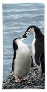 Kiss Me You Fool Beach Towel