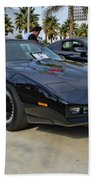 Kitt Beach Towel by Tommy Anderson