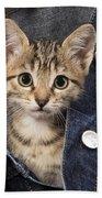 Kitten In Jean Jacket Beach Towel