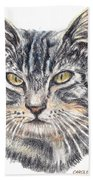 Kitty Kat Iphone Cases Smart Phones Cells And Mobile Cases Carole Spandau Cbs Art 337 Beach Towel