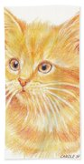 Kitty Kat Iphone Cases Smart Phones Cells And Mobile Cases Carole Spandau Cbs Art 339 Beach Towel