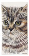 Kitty Kat Iphone Cases Smart Phones Cells And Mobile Cases Carole Spandau Cbs Art 343 Beach Towel