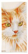 Kitty Kat Iphone Cases Smart Phones Cells And Mobile Cases Carole Spandau Cbs Art 344 Beach Towel