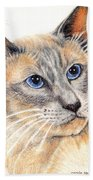 Kitty Kat Iphone Cases Smart Phones Cells And Mobile Cases Carole Spandau Cbs Art 346 Beach Towel