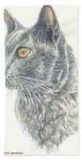 Kitty Kat Iphone Cases Smart Phones Cells And Mobile Cases Carole Spandau Cbs Art 347 Beach Towel