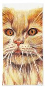 Kitty Kat Iphone Cases Smart Phones Cells And Mobile Cases Carole Spandau Cbs Art 351 Beach Towel