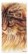 Kitty Kat Iphone Cases Smart Phones Cells And Mobile Cases Carole Spandau Cbs Art 352 Beach Towel