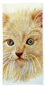Kitty Kat Iphone Cases Smart Phones Cells And Mobile Phone Cases Carole Spandau 301 Beach Towel