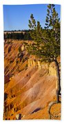 Know Your Roots - Bryce Canyon Beach Towel