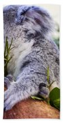 Koala Eating In A Tree Beach Towel