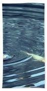 Koi And Sky Reflection Beach Towel