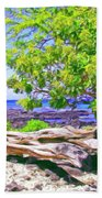Kona Coast Beach Towel