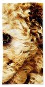 Labradoodle Dog Art - Sharon Cummings Beach Towel