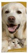 Labrador With Cat Beach Towel