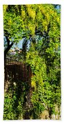 Laburnum By The River Beach Towel