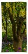 Laburnum Tree In Bloom Beach Towel