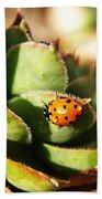 Ladybug And Chick Beach Towel