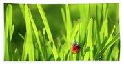 Ladybug In Grass Beach Towel