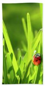 Ladybug In Grass Beach Towel