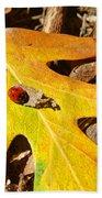 Ladybug Leafing By Diana Sainz Beach Towel