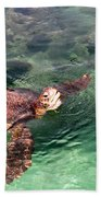 Lager Head Turtle 002 Beach Towel
