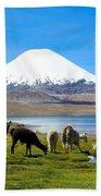 Lake Chungara Chilean Andes Beach Towel by Kurt Van Wagner