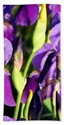 Lake Country Irises Beach Towel