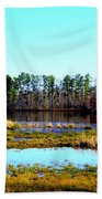 Lake Helen Lee Beach Towel