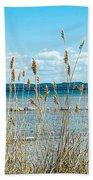 Lake Michigan Shore Grasses Beach Towel