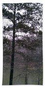 Lake Snowfall Beach Towel