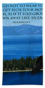 Lake Tahoe Eagle Proverbs Beach Towel