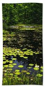Lake With Lily Pads Beach Towel