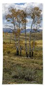 Lamar Valley In The Fall - Yellowstone Beach Towel
