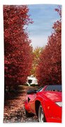 Lamborghini Maple Lane Big House Beach Towel