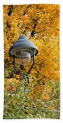 Lamp In The Autumn Leaves Beach Towel