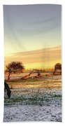 Landscape And Horse Beach Towel