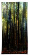 Landscape Forest Trees Tall Pine Beach Towel