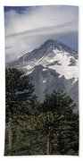 Lanin Volcano And Araucaria Trees Beach Towel