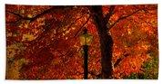 Lantern In Autumn Beach Sheet