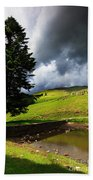 Lanty's Tarn On A Stormy Afternoon Beach Towel