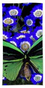 Large Green Butterfly Beach Towel